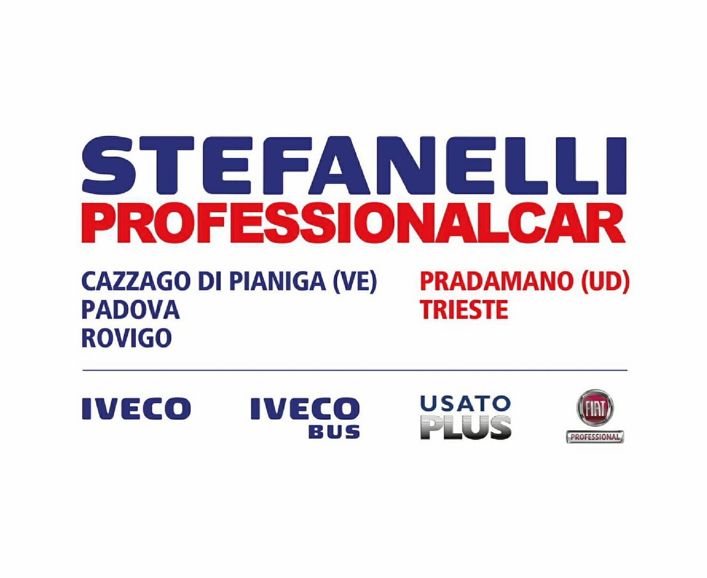 Stefanelli Professionalcar